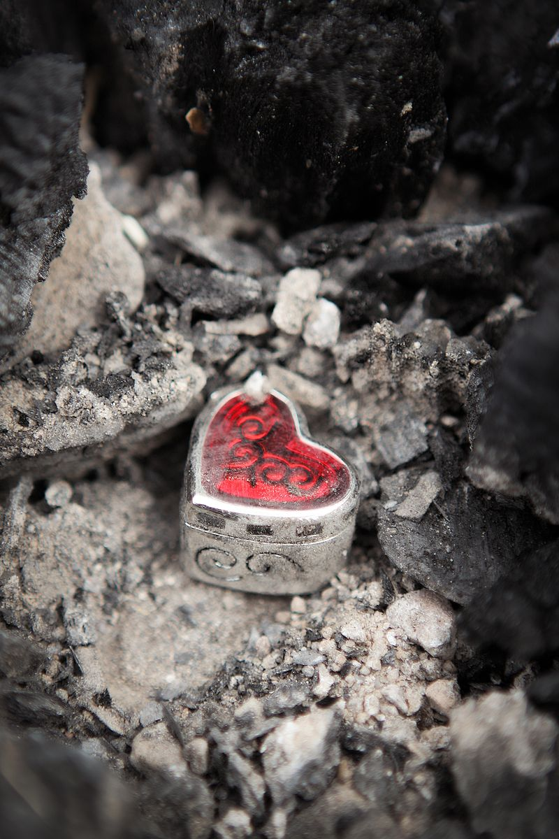 Redheart&ashes[1]