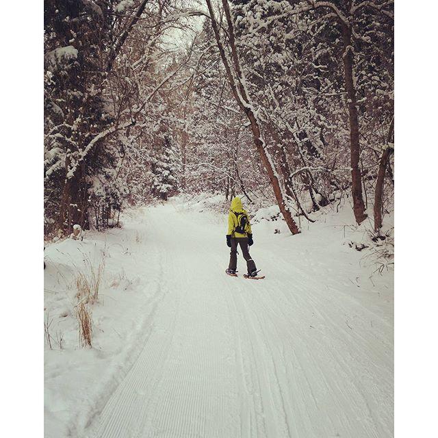 Snowshoeingforward